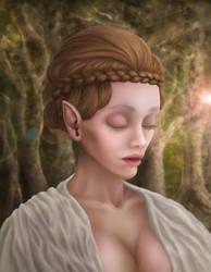 Unknow elven by Lesard