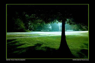 1AM by DavidVogt