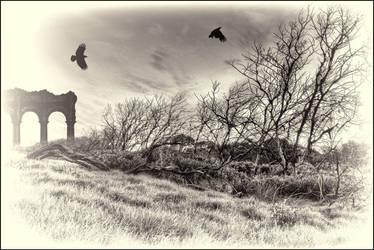 Black2 by Davenwolf
