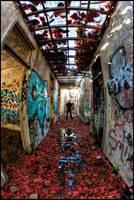 Asylum 8 by Davenwolf