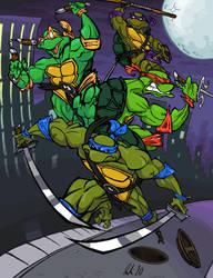 Teenage Mutant Ninja Turtles by BrendanCorris