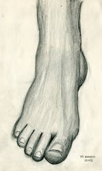 ArtBuddy - Foot studies - 01 - March 2015 by Summitwulf