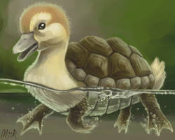 Turtle Duckling by miirshroom