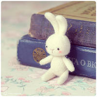 Sno Rabbit 2 by Katy-Doll