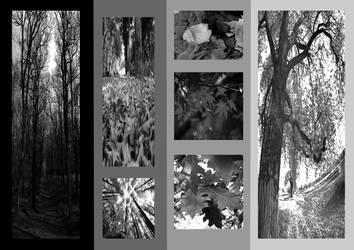 Autumn2 by hublybubly