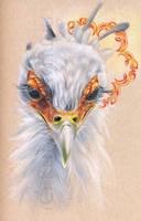 Secretary Bird by kokachu