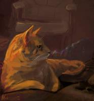 Gimpy-cat by frostcrystal