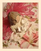 Heavenly Blossom by s15jesusfreak