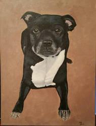 Dog commission  by StrandedAutumn