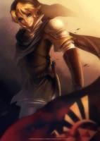Hyrule Warriors Link by Zelbunnii