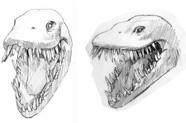 Elasmosaurus Head Sketches by carlos52302