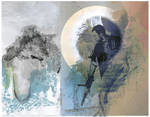 Enerowave by Senecal