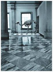 Pleistocene Skeleton by Rainfeather
