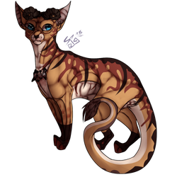 Great Red Dragon [Cat] COMMISSION by FuturisticallyChaos
