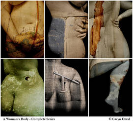 A Woman's Body - Entire Series by visceral