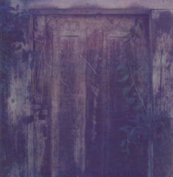 Door To An Unknown Past by jrgee