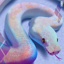 Leucistic Ball Python by Eden-West