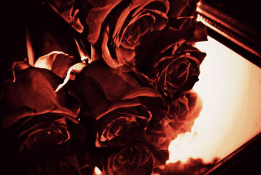 Heavenly Fire by Gardynn7