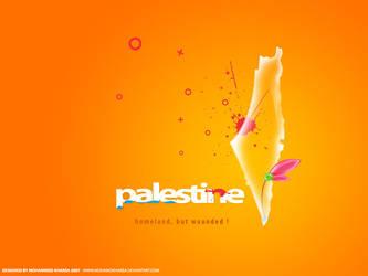 Palestine, Homeland.. by mohamdKharsa