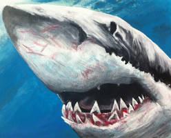 Shark by ckrickett