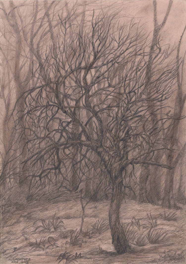 Tree Casts Horror by CalciteMink1610