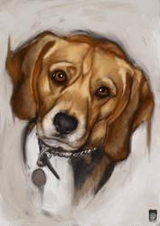 Portrait of Beagle by Russtiel