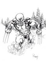 Wolverine by TomRaney