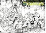 Turtles by TomRaney