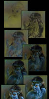 Avatar Neytiri wip by SteveDeLaMare