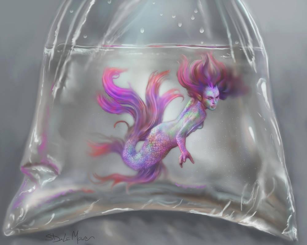 A Rare Catch by SteveDeLaMare