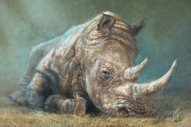 The Rhino and the Rabbit by SteveDeLaMare