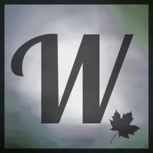 Wellkins's Profile Picture