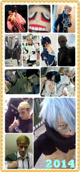 2014 Cosplay Recap ^_^ by WiredintoSpace