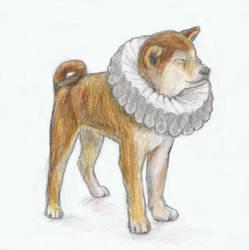 Shiba inu puppy wearing an Elizabethan collar by gagambo