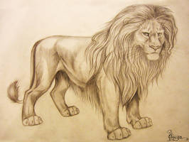 King Lion by OmegaLioness
