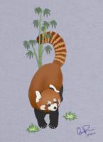 Simulated Cutout Red Panda by twapa
