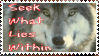 Spirit of the Wolf by Rtalon235