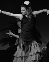 Flamenco by sm2k2