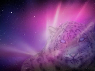 2 x Snow Leopard by T0j