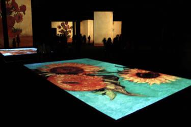Van Gogh Alive Exhibition by Canankk
