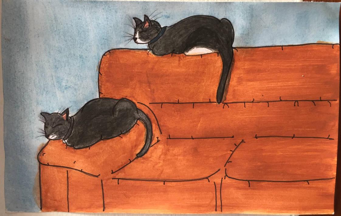Gatos by AbrahamS10