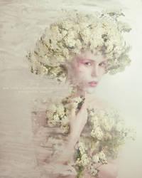 Albino by kozyafffka