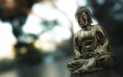 3D Zen Octane render 2 v5 by 3DEricDesign