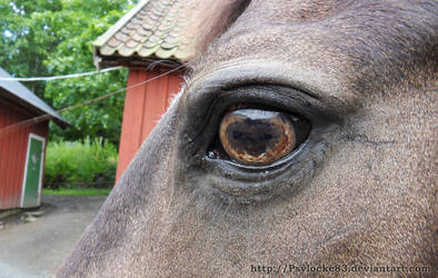 I love your eyes by Psylocke83