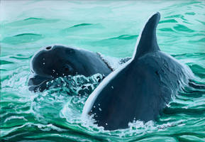 Dolphins by KatelijnVanMunster