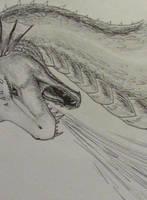 dragon sketch by KatelijnVanMunster