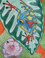 Frog Colors by KatelijnVanMunster