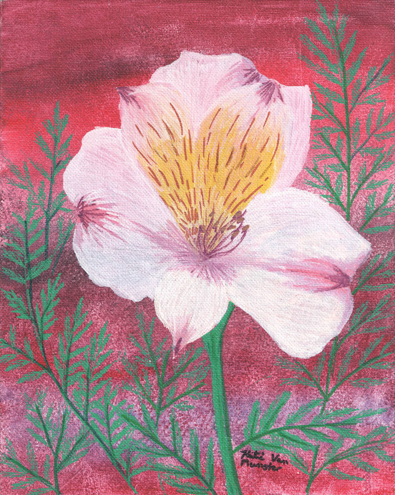 Pink Lilly by KatelijnVanMunster