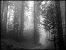 errance onirique by deadforest17