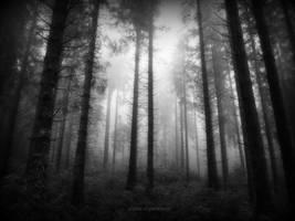 piliers de la terre by deadforest17
